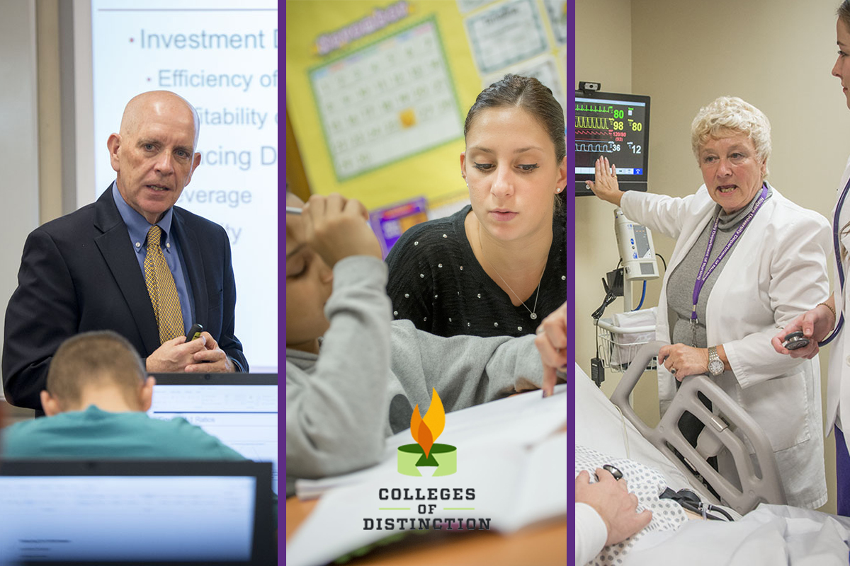 Colleges of Distinction Recognizes NU for Excellent Business, Education and Nursing Programs